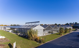 Greenhouses - Angers Plant campus